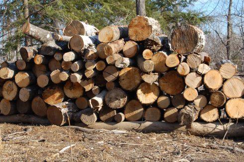 Summer bonfire stack